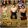 Three sumo wrestlers standing in the ring, with formal aprons.