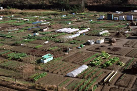 Aerial view of dry farmland with vegetable greenhouses.